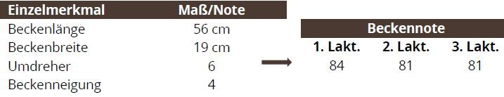 Tabelle 3: Beispiel Komplexnote für BECKEN in Abhängigkeit der Laktation